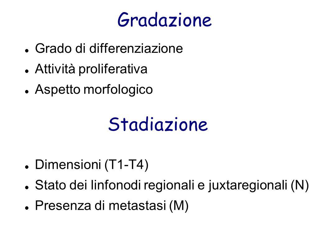 Gradazione Grado di differenziazione Attività proliferativa Aspetto morfologico Stadiazione Dimensioni (T1-T4) Stato dei linfonodi regionali e juxtare