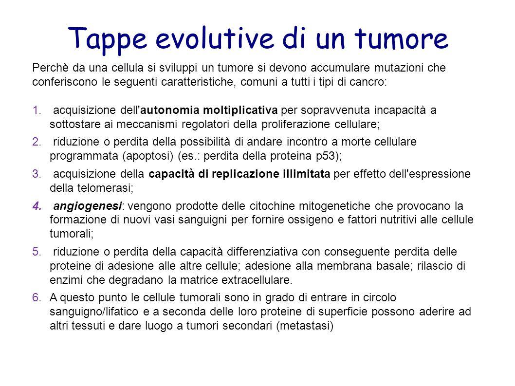 Perchè da una cellula si sviluppi un tumore si devono accumulare mutazioni che conferiscono le seguenti caratteristiche, comuni a tutti i tipi di canc