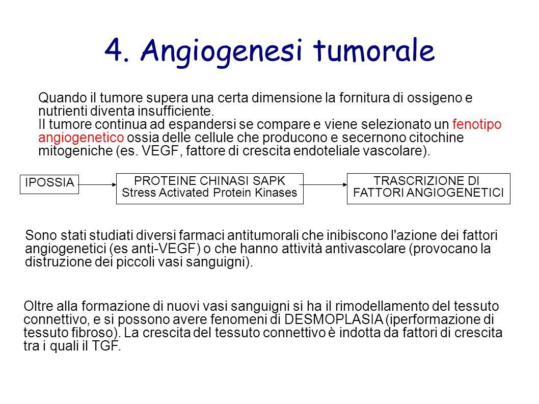 4. Angiogenesi tumorale Quando il tumore supera una certa dimensione la fornitura di ossigeno e nutrienti diventa insufficiente. Il tumore continua ad