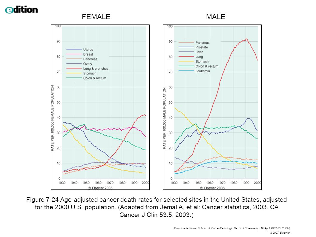 Figure 7-24 Age-adjusted cancer death rates for selected sites in the United States, adjusted for the 2000 U.S.