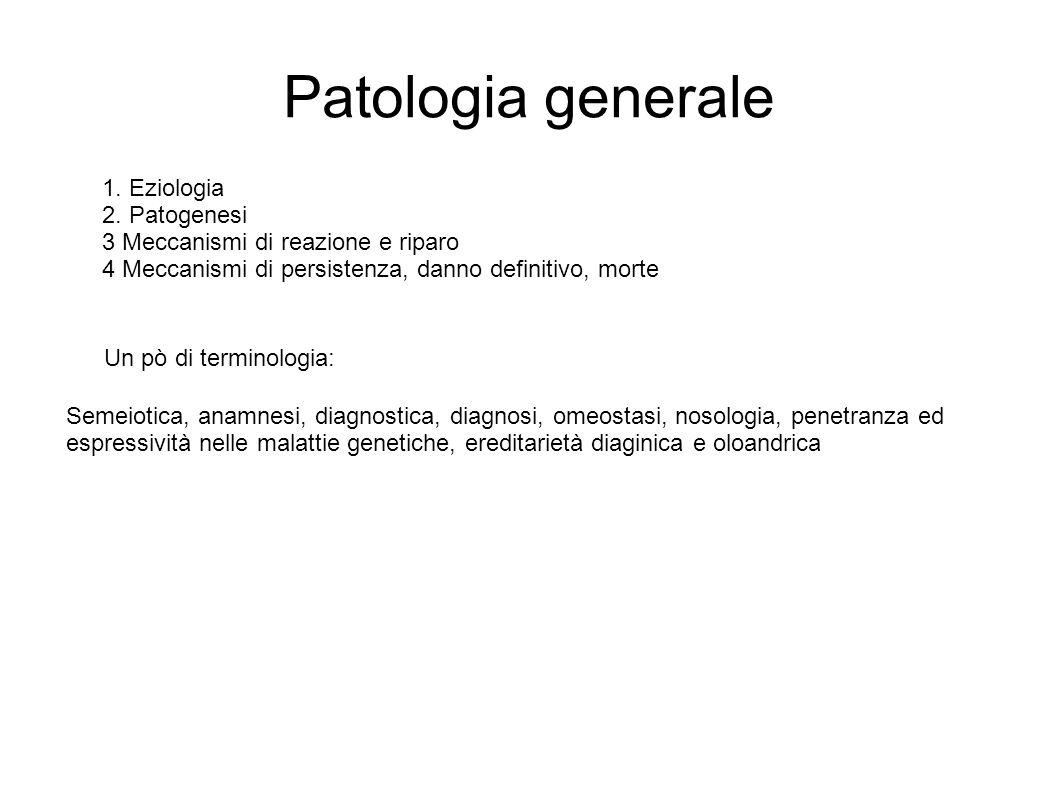 1. Eziologia 2. Patogenesi 3 Meccanismi di reazione e riparo 4 Meccanismi di persistenza, danno definitivo, morte Patologia generale Semeiotica, anamn