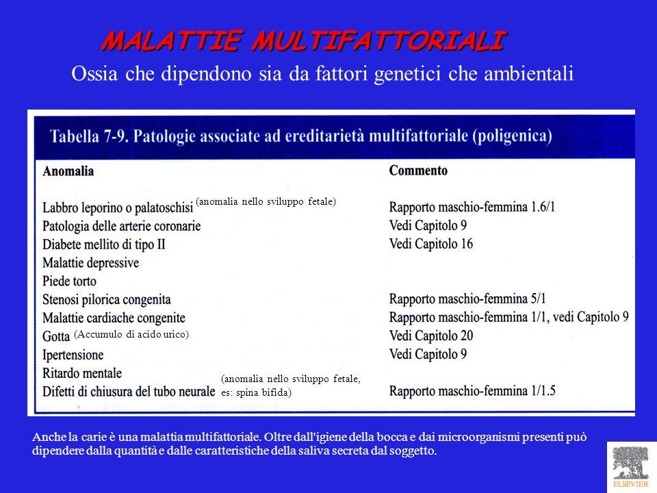 MALATTIE MULTIFATTORIALI Ossia che dipendono sia da fattori genetici che ambientali Anche la carie è una malattia multifattoriale. Oltre dall'igiene d