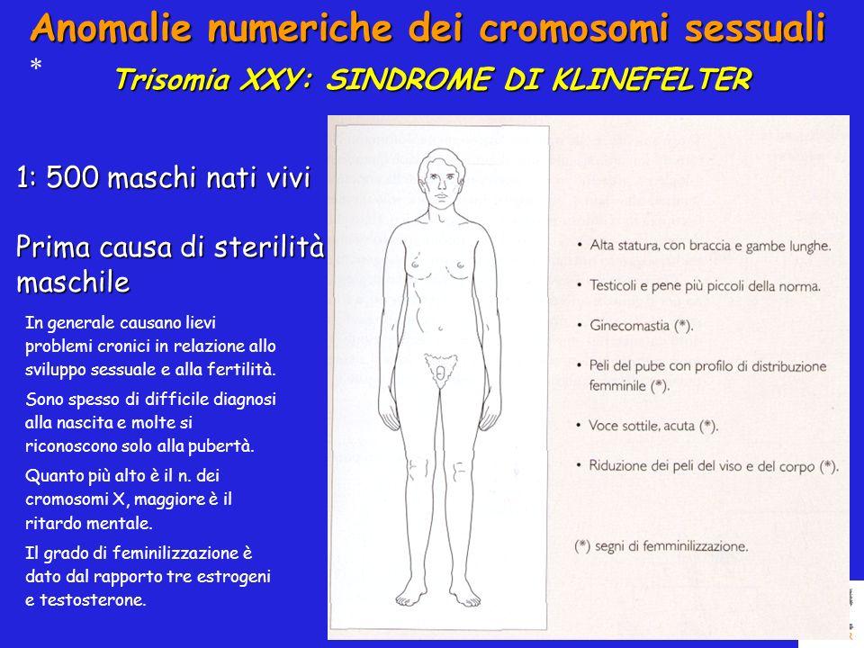 Trisomia XXY: SINDROME DI KLINEFELTER Anomalie numeriche dei cromosomi sessuali * 1: 500 maschi nati vivi Prima causa di sterilità maschile In general