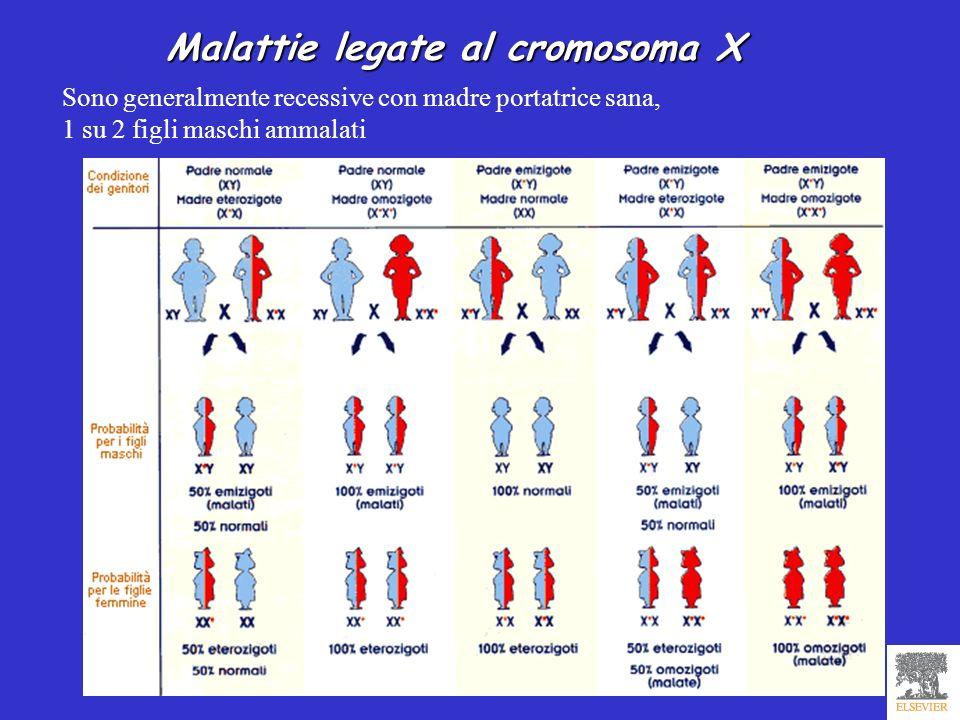 Malattie legate al cromosoma X Sono generalmente recessive con madre portatrice sana, 1 su 2 figli maschi ammalati