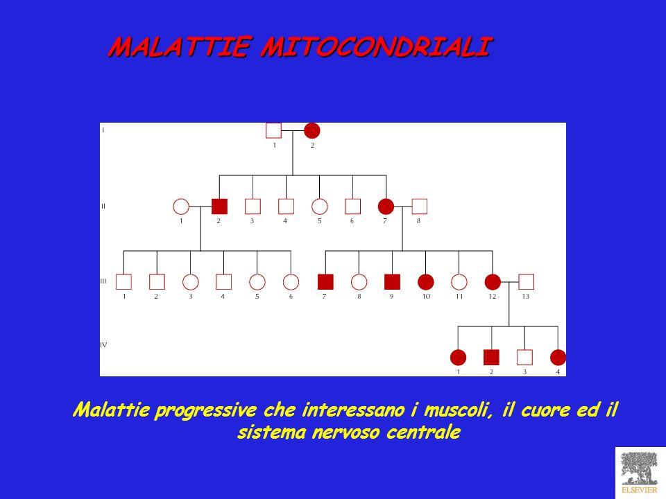 MALATTIE MITOCONDRIALI MALATTIE MITOCONDRIALI Malattie progressive che interessano i muscoli, il cuore ed il sistema nervoso centrale
