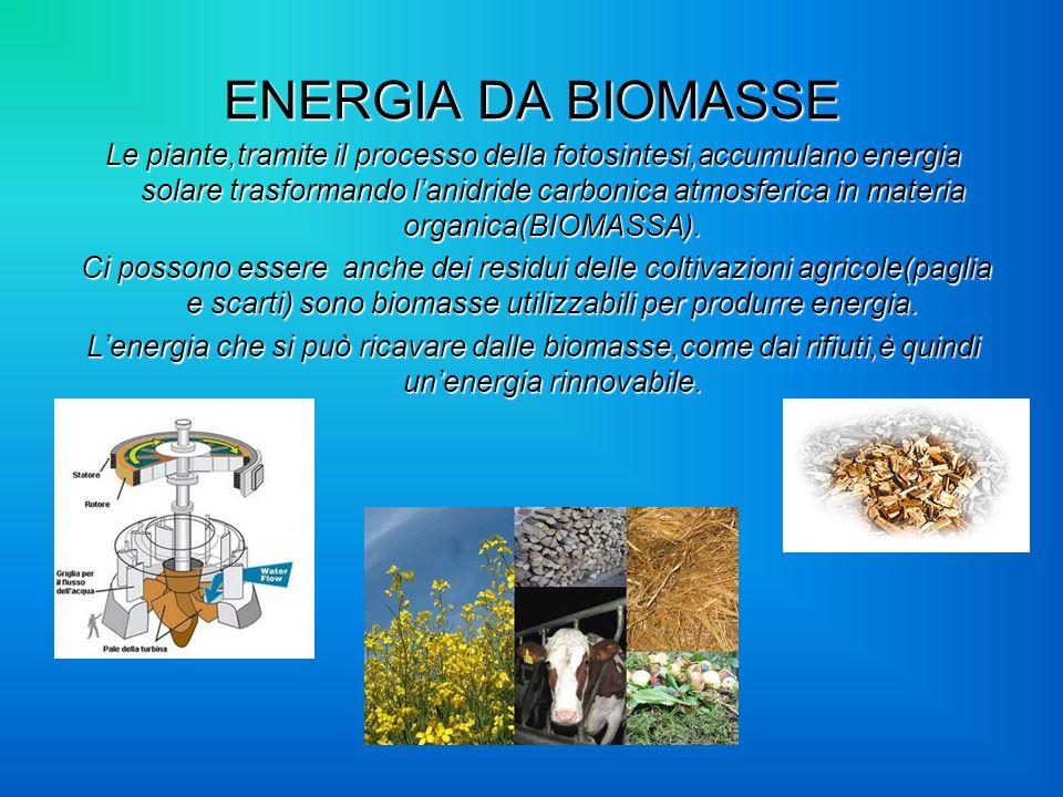 ENERGIA DA BIOMASSE Le piante,tramite il processo della fotosintesi,accumulano energia solare trasformando lanidride carbonica atmosferica in materia