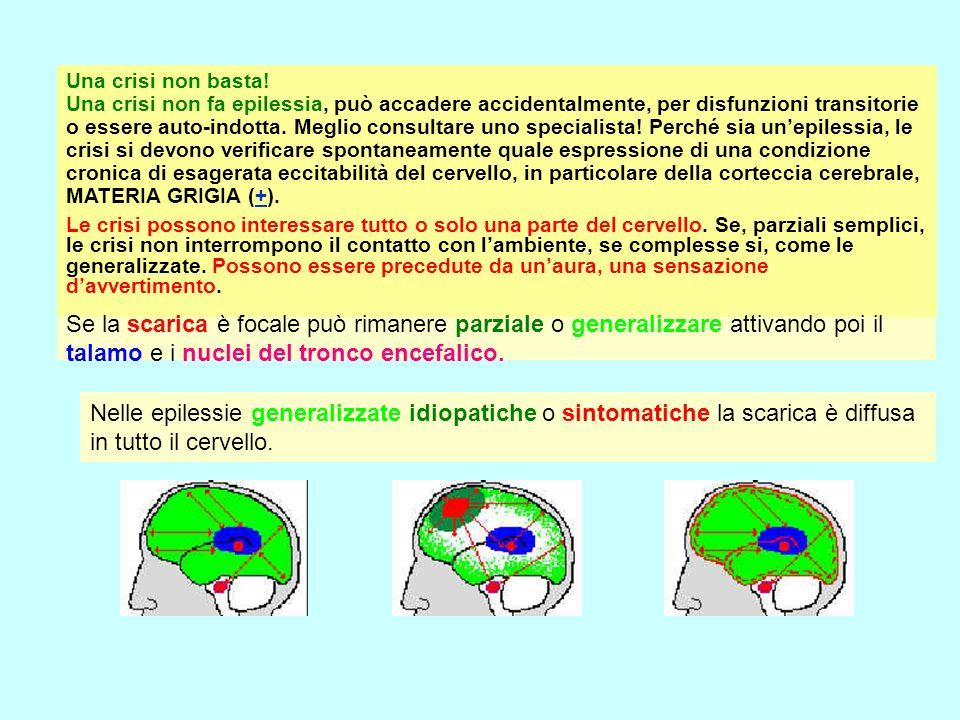 Corteccia cerebrale Una crisi non basta! Una crisi non fa epilessia, può accadere accidentalmente, per disfunzioni transitorie o essere auto-indotta.