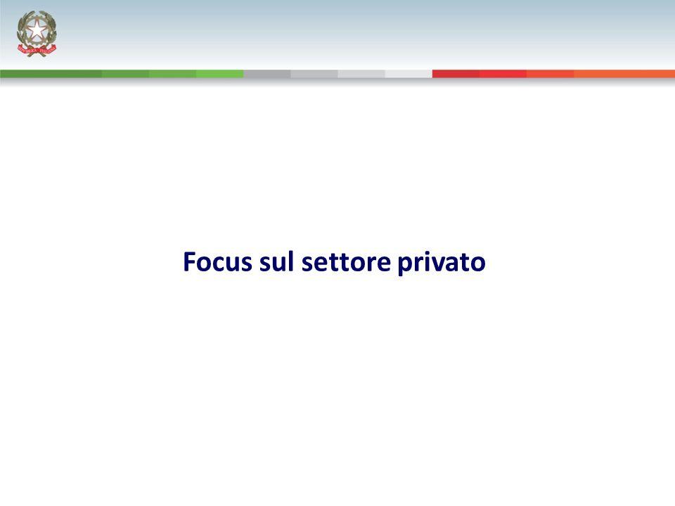 Focus sul settore privato
