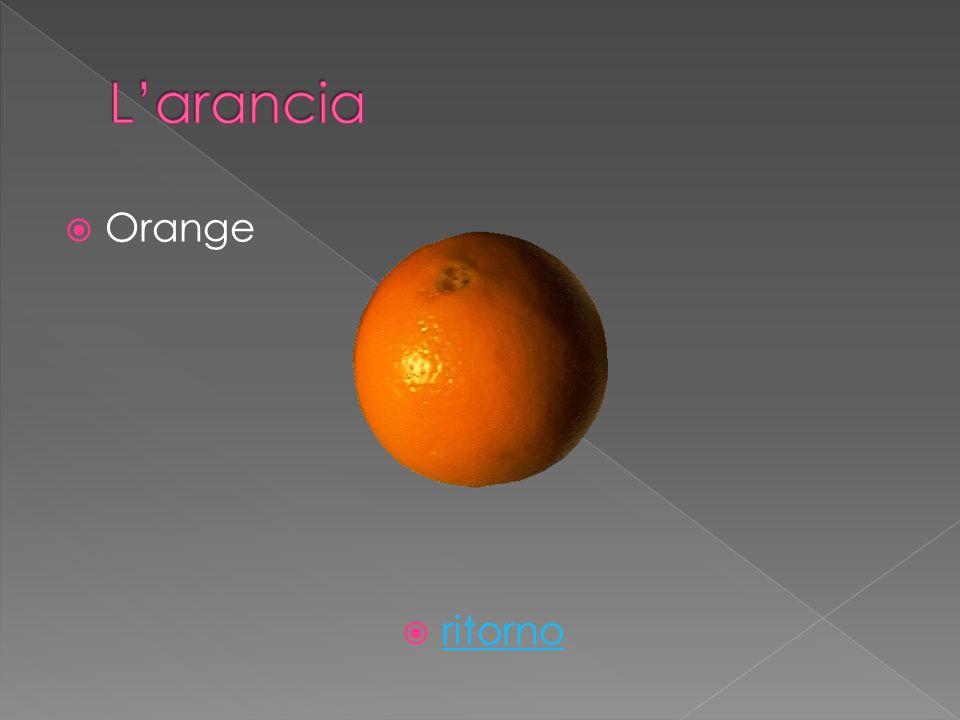 Orange ritorno