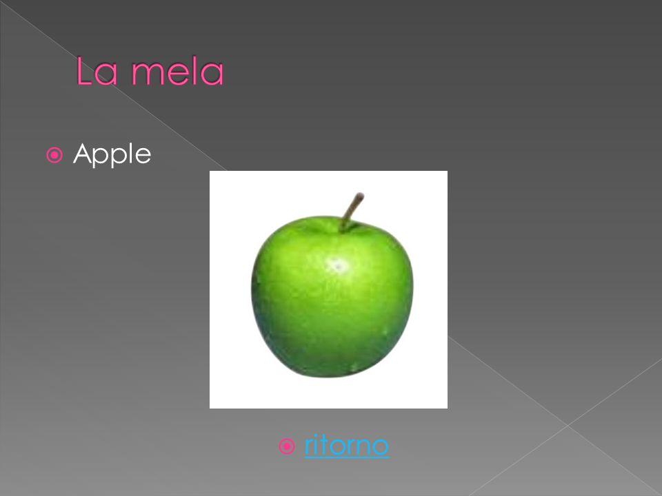 Apple ritorno