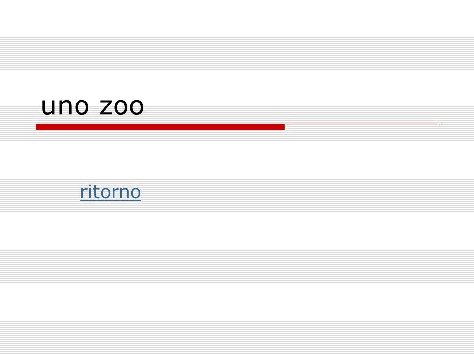 uno zoo ritorno