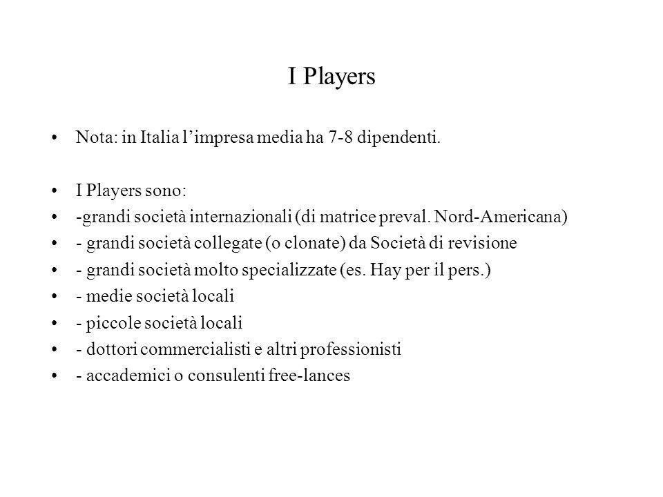 I Players Nota: in Italia limpresa media ha 7-8 dipendenti. I Players sono: -grandi società internazionali (di matrice preval. Nord-Americana) - grand