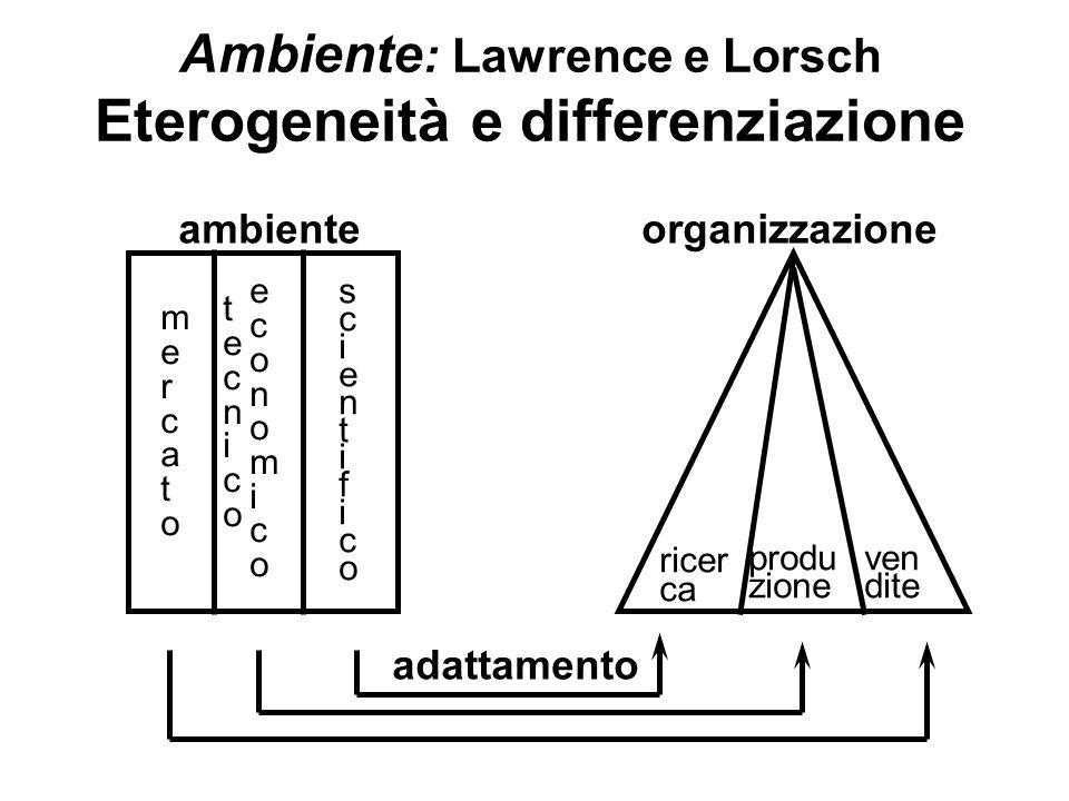 Ambiente : Lawrence e Lorsch Eterogeneità e differenziazione ambienteorganizzazione mercatomercato tecnicotecnico economicoeconomico scientificoscient