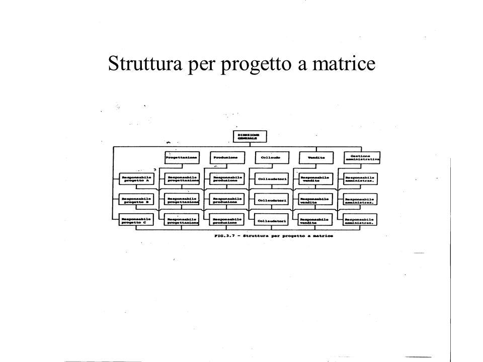 Struttura per progetto a matrice