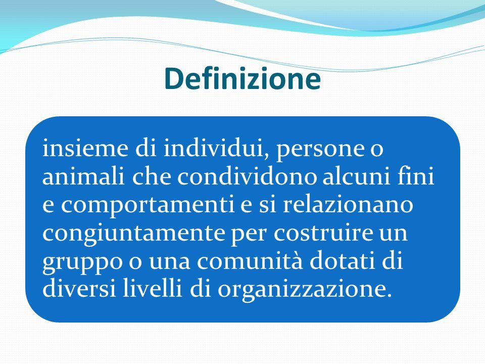 Definizione insieme di individui, persone o animali che condividono alcuni fini e comportamenti e si relazionano congiuntamente per costruire un grupp