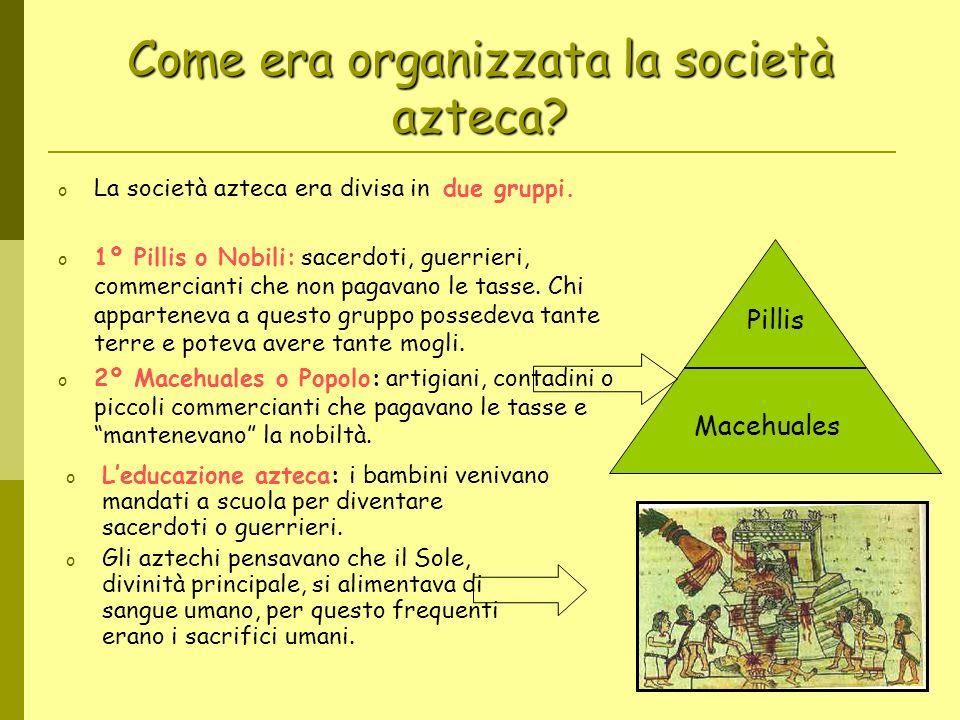Come era organizzata la società azteca? o La società azteca era divisa in due gruppi. o 1º Pillis o Nobili: sacerdoti, guerrieri, commercianti che non