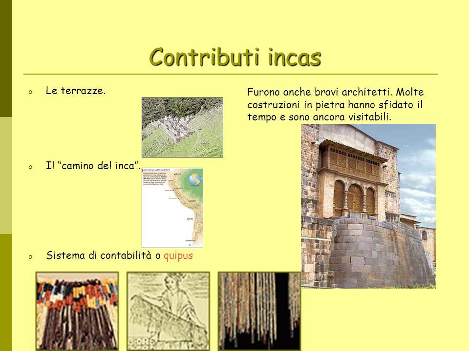 Contributi incas o Le terrazze. o Il camino del inca. o Sistema di contabilità o quipus Furono anche bravi architetti. Molte costruzioni in pietra han