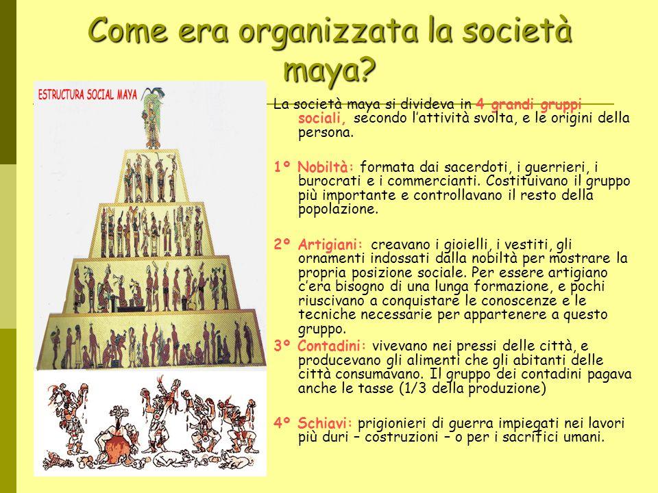 Come era organizzata la società maya? La società maya si divideva in 4 grandi gruppi sociali, secondo lattività svolta, e le origini della persona. 1º