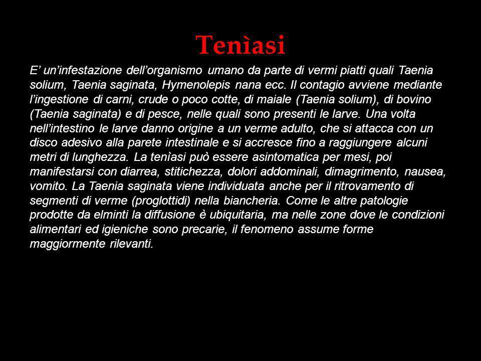 Tenìasi E uninfestazione dellorganismo umano da parte di vermi piatti quali Taenia solium, Taenia saginata, Hymenolepis nana ecc. Il contagio avviene