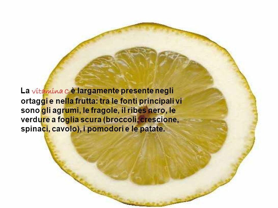 vitamina C La vitamina C è largamente presente negli ortaggi e nella frutta: tra le fonti principali vi sono gli agrumi, le fragole, il ribes nero, le
