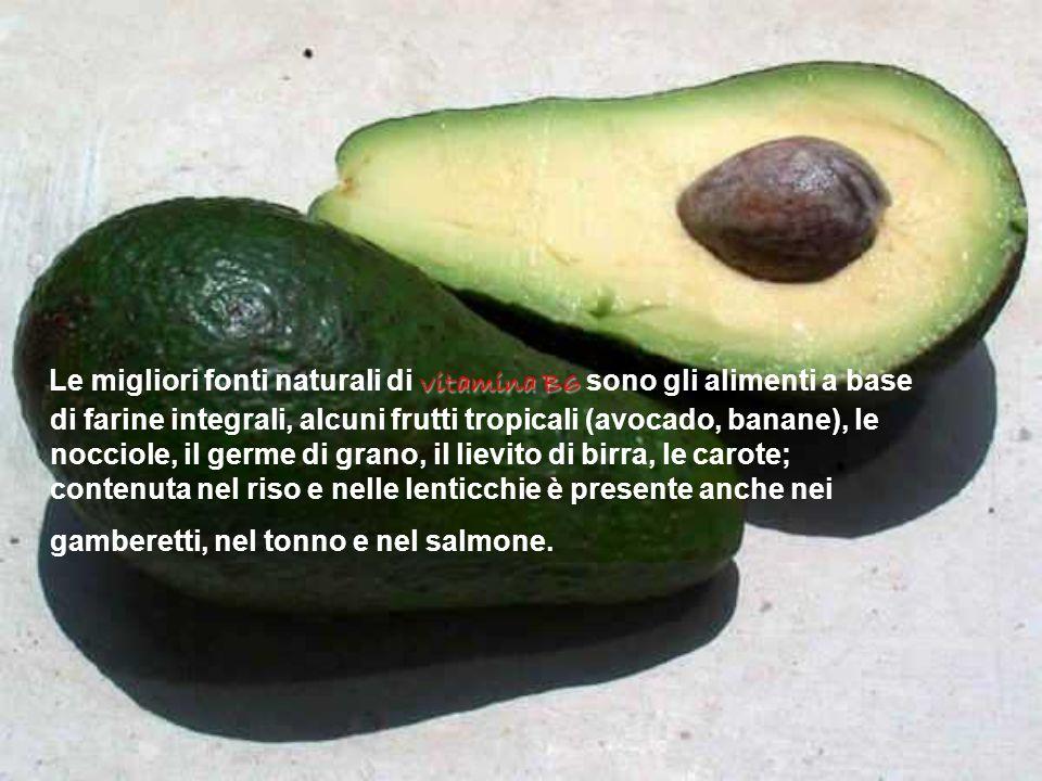 vitamina B6 Le migliori fonti naturali di vitamina B6 sono gli alimenti a base di farine integrali, alcuni frutti tropicali (avocado, banane), le nocc