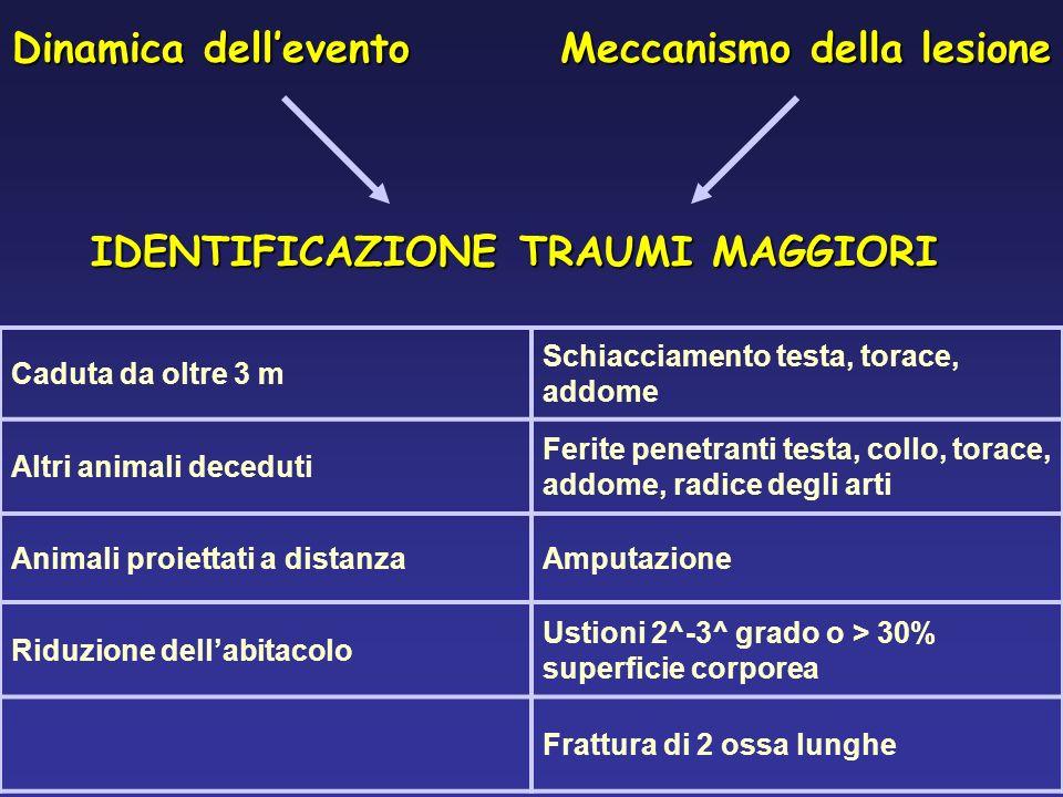 Meccanismo della lesione Dinamica dellevento IDENTIFICAZIONE TRAUMI MAGGIORI Caduta da oltre 3 m Schiacciamento testa, torace, addome Altri animali de