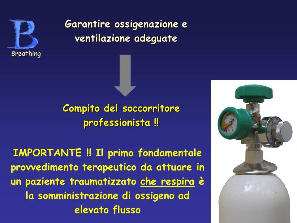 Garantire ossigenazione e ventilazione adeguate Compito del soccorritore professionista !! Breathing IMPORTANTE !! Il primo fondamentale provvedimento