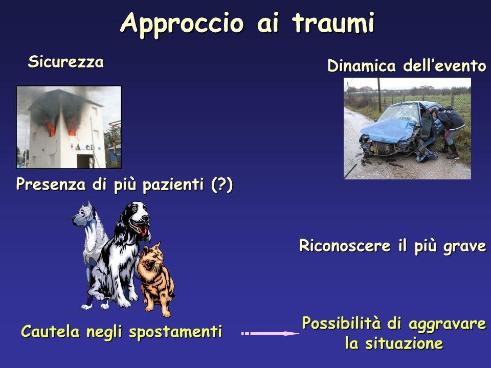 Il meccanismo della lesione ha provocato lesioni di organi vitali? Bologna, 16 Gennaio 2008