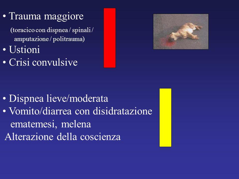 Trauma maggiore (toracico con dispnea / spinali / amputazione / politrauma) Ustioni Crisi convulsive Dispnea lieve/moderata Vomito/diarrea con disidra