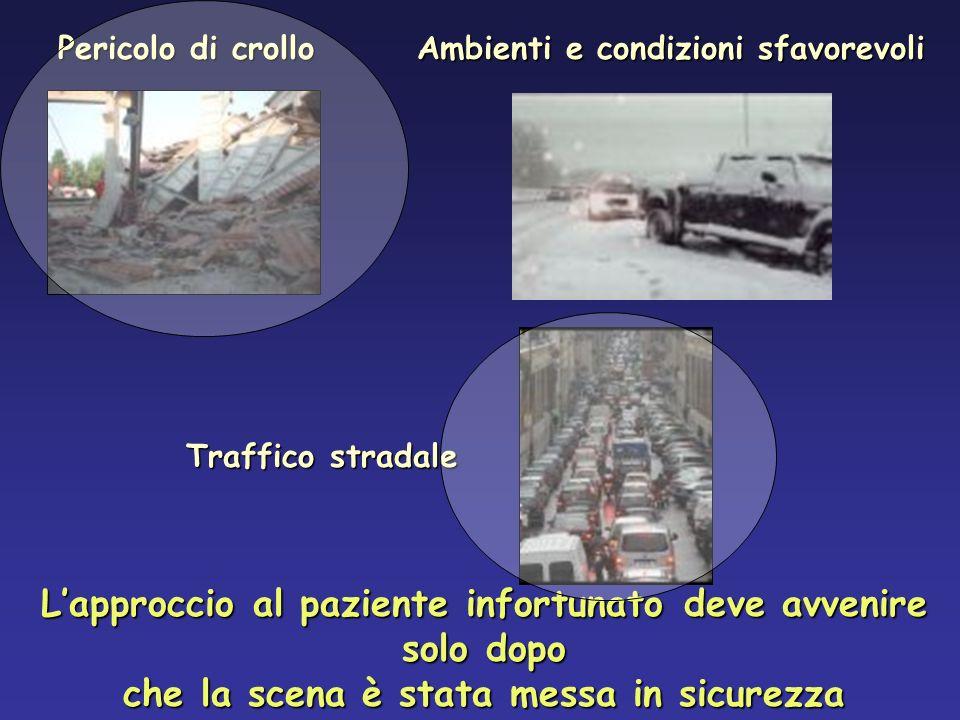 In incidenti automobilistici nel 39% dei cani con fratture si notano anche lesioni al torace Spackman, 1984 Paziente