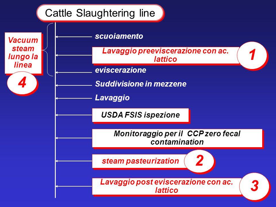 Monitoraggio per il CCP zero fecal contamination USDA FSIS ispezione Cattle Slaughtering line Lavaggio preeviscerazione con ac. lattico 1 1 steam past