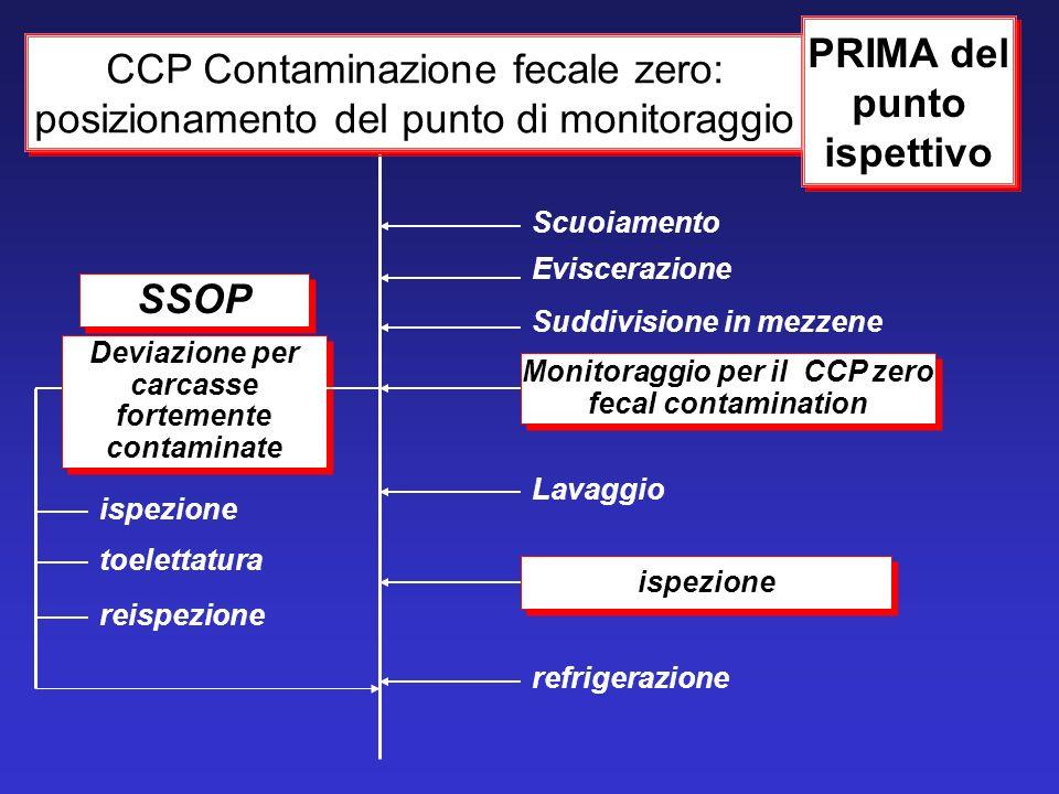 Monitoraggio per il CCP zero fecal contamination ispezione Lavaggio Eviscerazione Suddivisione in mezzene Scuoiamento CCP Contaminazione fecale zero: