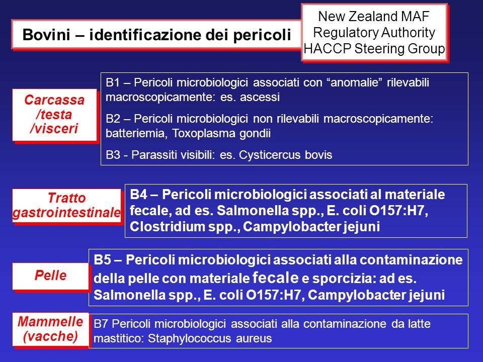 B1 – Pericoli microbiologici associati con anomalie rilevabili macroscopicamente: es. ascessi B2 – Pericoli microbiologici non rilevabili macroscopica