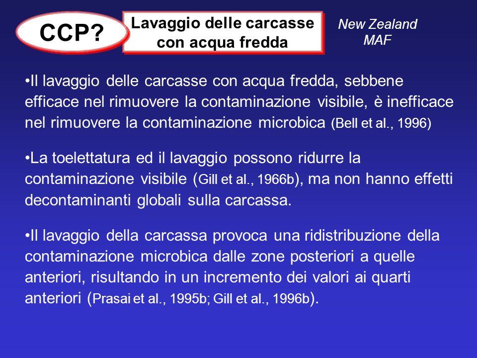 Il lavaggio delle carcasse con acqua fredda, sebbene efficace nel rimuovere la contaminazione visibile, è inefficace nel rimuovere la contaminazione m