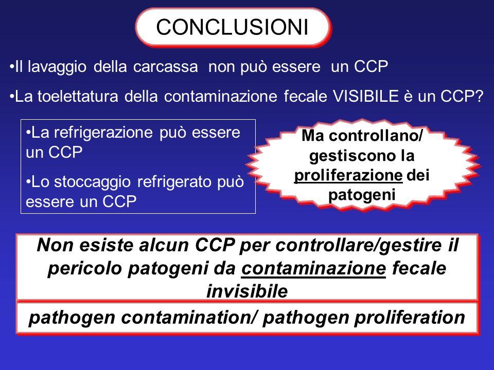 CONCLUSIONI Il lavaggio della carcassa non può essere un CCP La toelettatura della contaminazione fecale VISIBILE è un CCP? La refrigerazione può esse