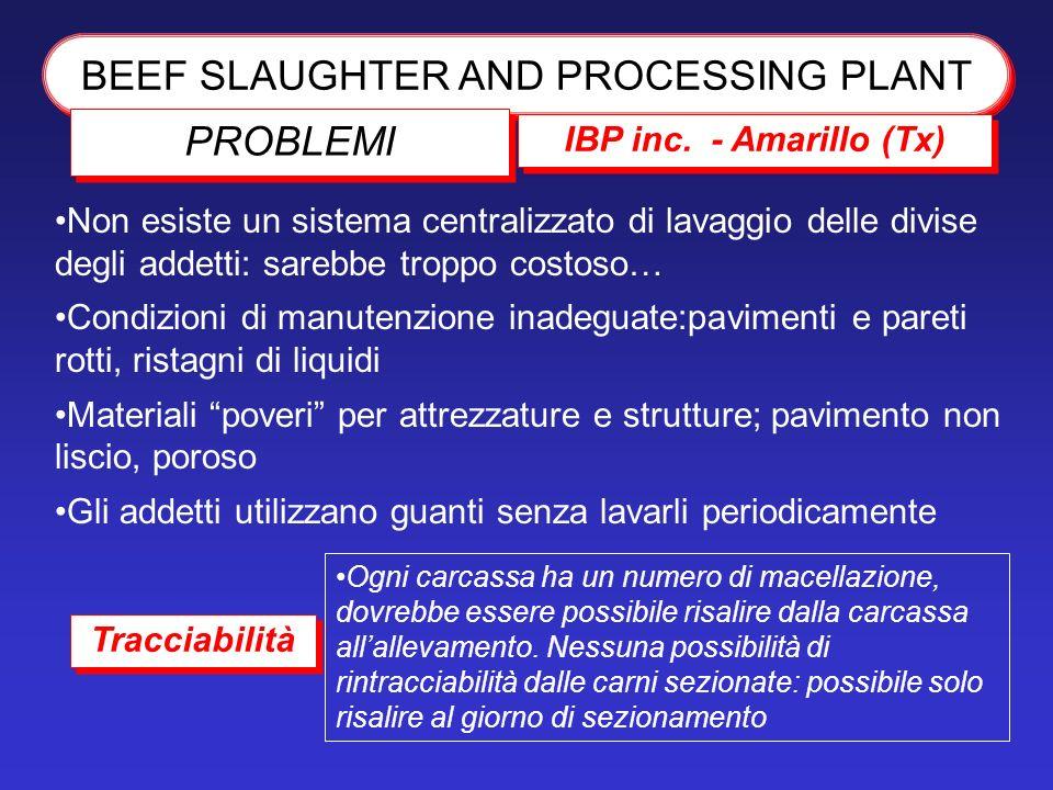 BEEF SLAUGHTER AND PROCESSING PLANT IBP inc. - Amarillo (Tx) PROBLEMI Non esiste un sistema centralizzato di lavaggio delle divise degli addetti: sare