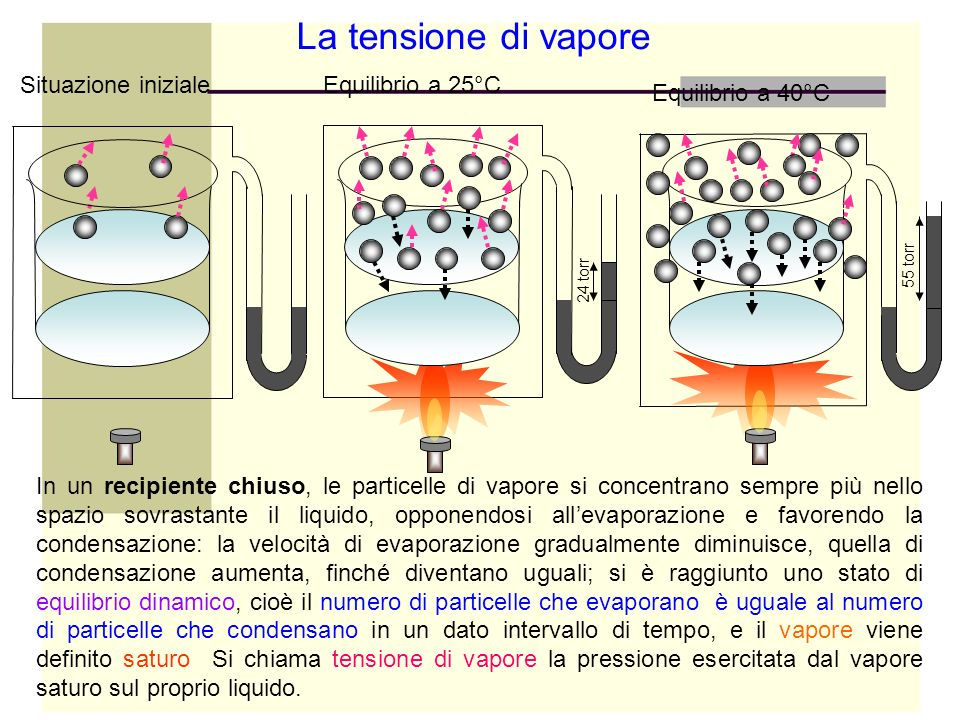 La tensione di vapore Situazione inizialeEquilibrio a 25°C Equilibrio a 40°C 24 torr 55 torr In un recipiente chiuso, le particelle di vapore si conce