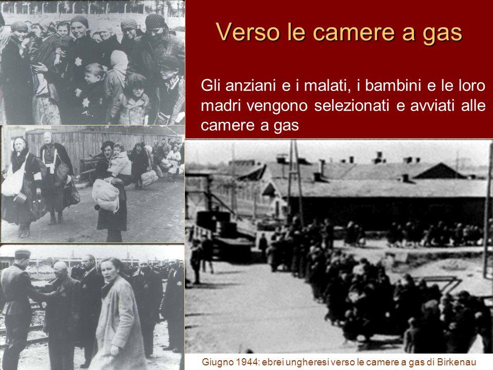 Gli anziani e i malati, i bambini e le loro madri vengono selezionati e avviati alle camere a gas Giugno 1944: ebrei ungheresi verso le camere a gas d
