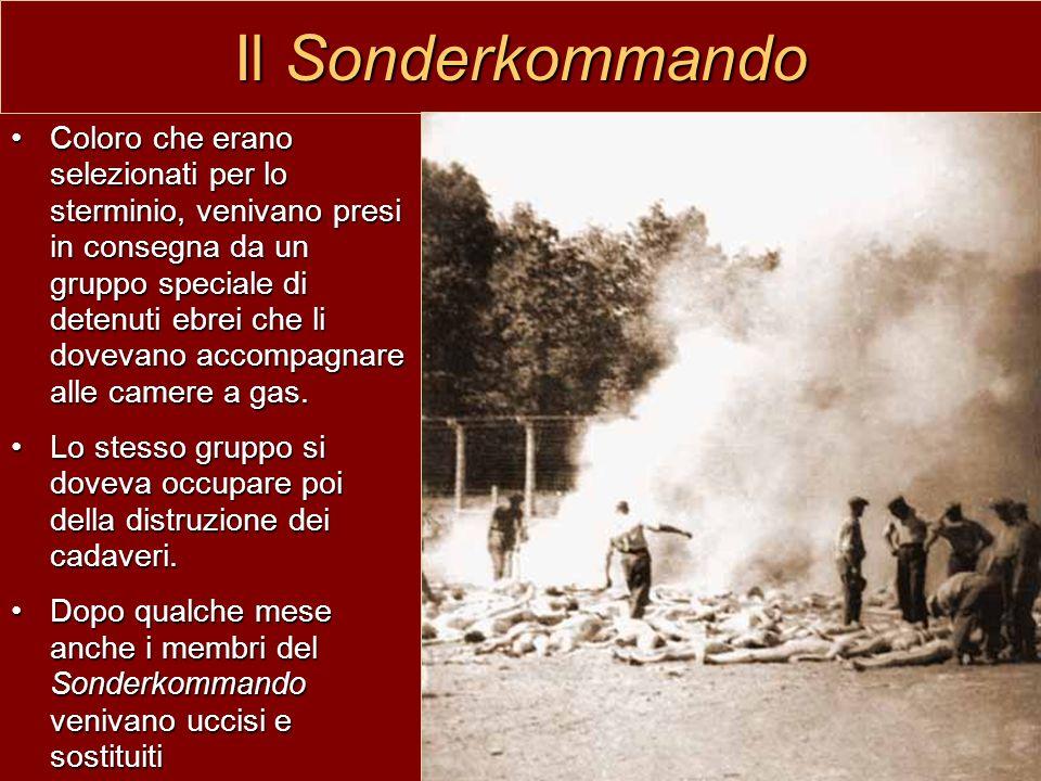 Il Sonderkommando Coloro che erano selezionati per lo sterminio, venivano presi in consegna da un gruppo speciale di detenuti ebrei che li dovevano ac