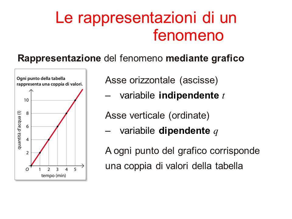 Le rappresentazioni di un fenomeno Rappresentazione del fenomeno mediante grafico Asse orizzontale (ascisse) –variabile indipendente t Asse verticale