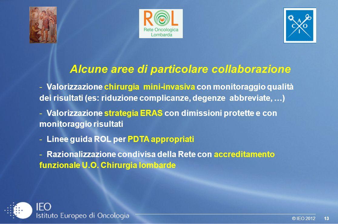 13© IEO 2012 Alcune aree di particolare collaborazione - Valorizzazione chirurgia mini-invasiva con monitoraggio qualità dei risultati (es: riduzione