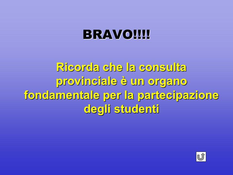 BRAVO!!!! Gruppo studentesco costituito dai rappresentanti del C.dI. ed altri alunni (minimo 10) che sono in contatto con la rappresentanza della Cons