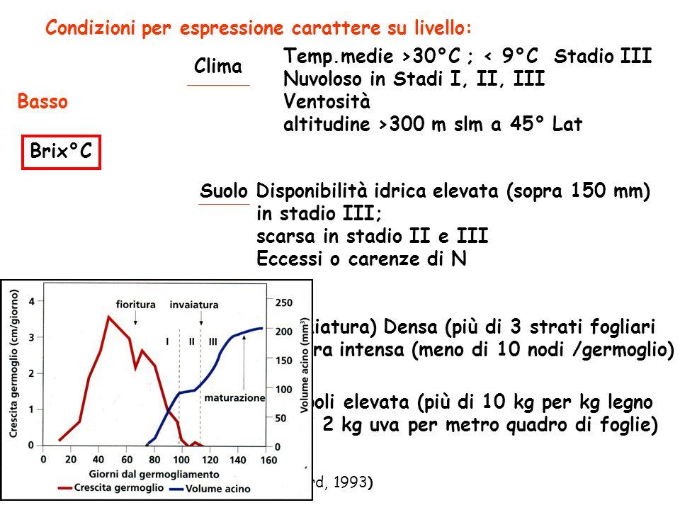 Condizioni per espressione carattere su livello: Brix°C Clima Basso Temp.medie >30°C ; < 9°C Stadio III Nuvoloso in Stadi I, II, III Ventosità altitudine >300 m slm a 45° Lat Suolo Disponibilità idrica elevata (sopra 150 mm) in stadio III; scarsa in stadio II e III Eccessi o carenze di N Chioma (ad invaiatura) Densa (più di 3 strati fogliari cimatura intensa (meno di 10 nodi /germoglio) Carica di grappoli elevata (più di 10 kg per kg legno (più di 2 kg uva per metro quadro di foglie) Pianta (Indicazioni tratte da Jackon e Lombard, 1993)