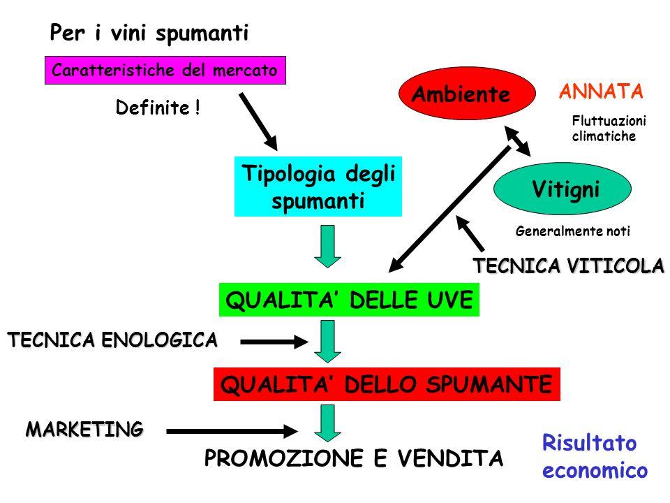 Per i vini spumanti Caratteristiche del mercato Definite .