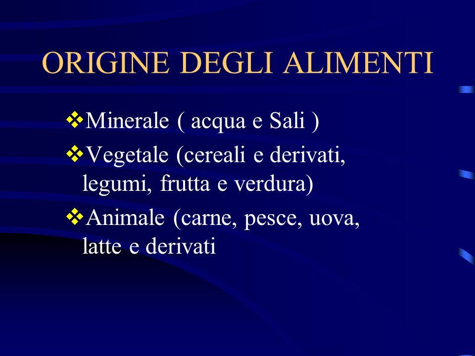 ORIGINE DEGLI ALIMENTI Minerale ( acqua e Sali ) Vegetale (cereali e derivati, legumi, frutta e verdura) Animale (carne, pesce, uova, latte e derivati
