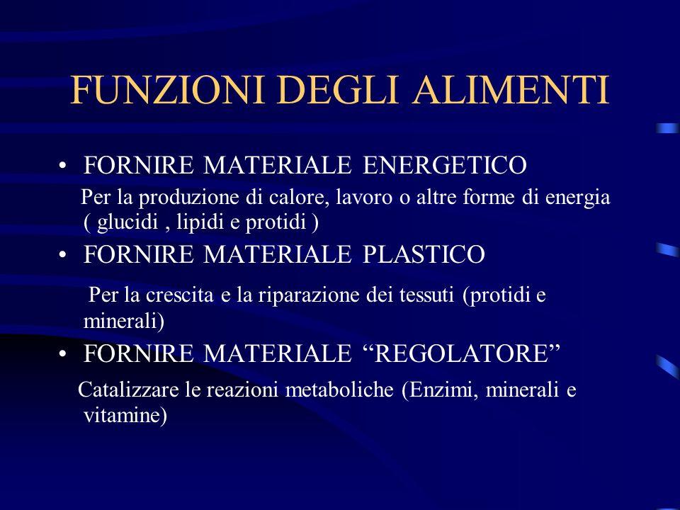 FUNZIONI DEGLI ALIMENTI FORNIRE MATERIALE ENERGETICO Per la produzione di calore, lavoro o altre forme di energia ( glucidi, lipidi e protidi ) FORNIR