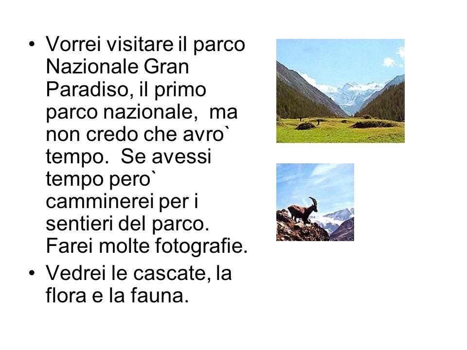 Vorrei visitare il parco Nazionale Gran Paradiso, il primo parco nazionale, ma non credo che avro` tempo. Se avessi tempo pero` camminerei per i senti