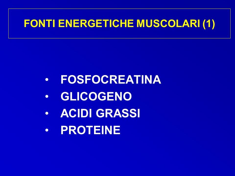 FONTI ENERGETICHE MUSCOLARI (1) FOSFOCREATINA GLICOGENO ACIDI GRASSI PROTEINE