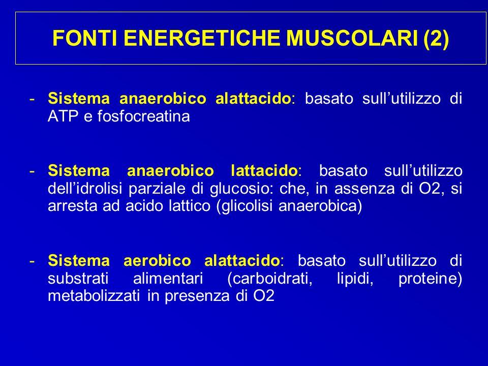FONTI ENERGETICHE MUSCOLARI (2) -Sistema anaerobico alattacido: basato sullutilizzo di ATP e fosfocreatina -Sistema anaerobico lattacido: basato sullu
