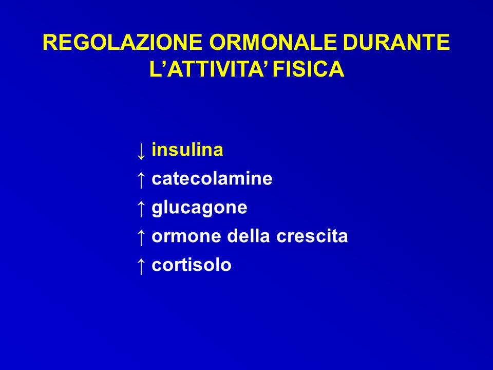 REGOLAZIONE ORMONALE DURANTE LATTIVITA FISICA insulina catecolamine glucagone ormone della crescita cortisolo